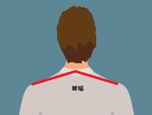 肩幅のイラスト