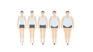 体型区分図