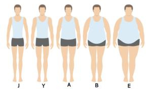 J-E体の男性の人体イラスト